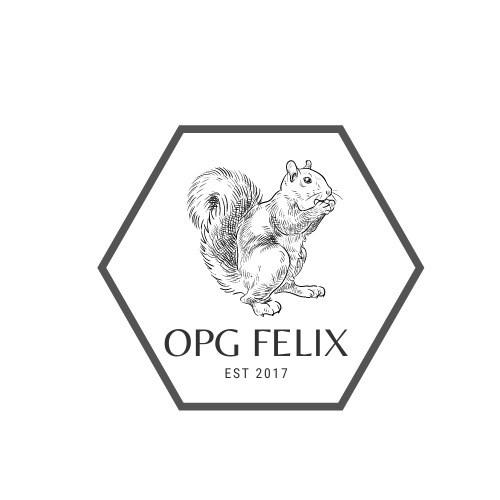 OPG FELIX 4